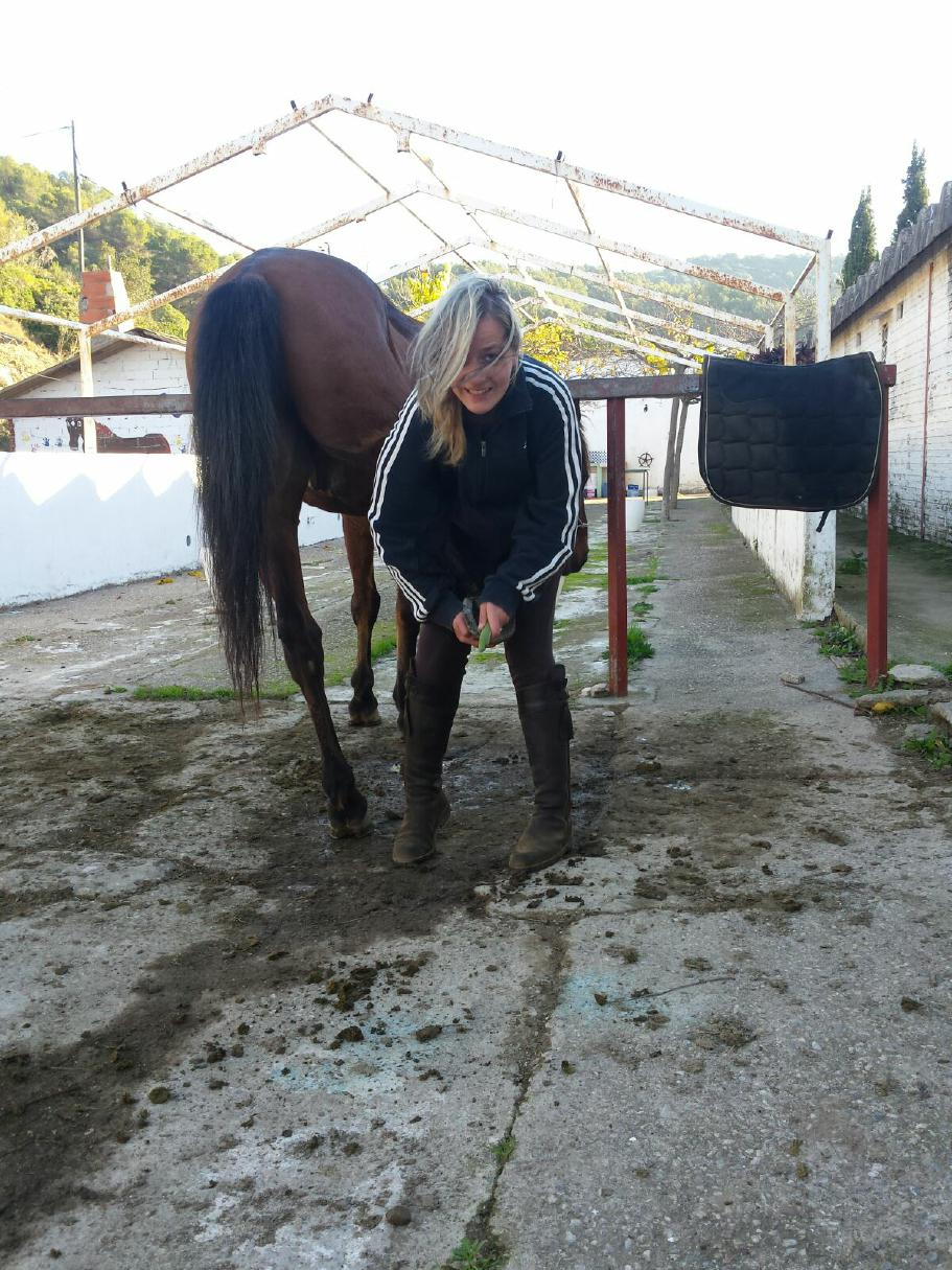 I like to clean the horses, it's the best way to learn to know their character