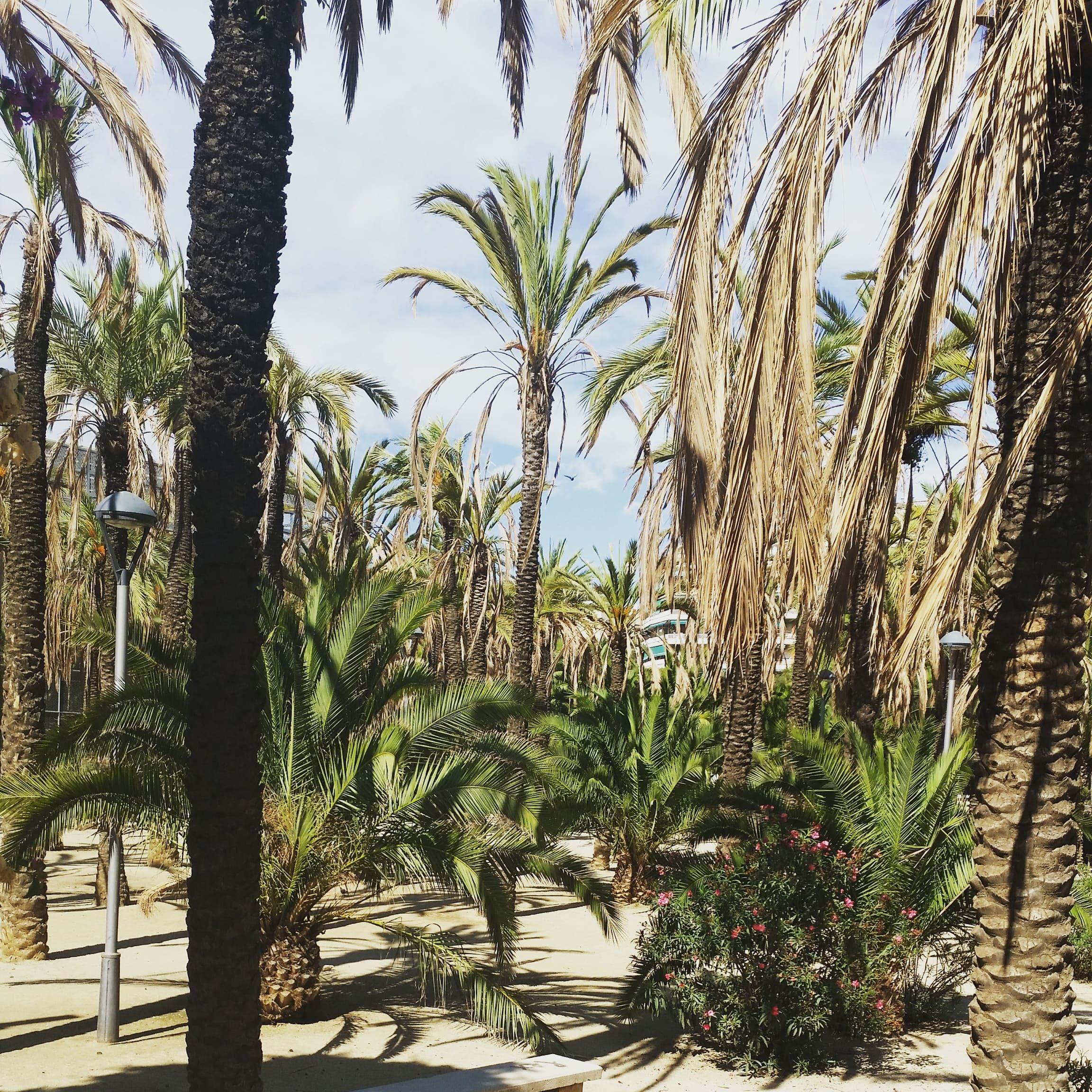 Parque de Joan Miró, Barcelona